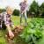 Uslovi ostvarivanja poljoprivredne penzije, problemi i obećanja