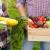 Lila i Čaba Holo uzgajaju i prodaju sveže povrće putem interneta