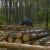 Općekorisne funkcije šuma: Obračun i uplata naknade za korištenje