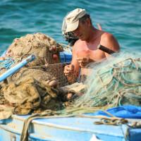 Manji ulov ribe u 2019. godini, a i ribarskih flota u EU sve manje