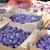 Rusija upozorila da bi mogla da obustavi uvoz srpskog voća