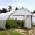 Žarko Ilin: Povećajte plasteničku proizvodnju povrća