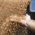 U FBiH proizvedeno pšenice više za osam odsto, vlaga odgovara predstojećoj sjetvi