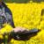 Prodaja krijumčarenih sredstava za zaštitu bilja i preko društvenih mreža