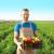 Novi Sad: 22 miliona dinara za podršku mladim poljoprivrednicima
