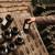 Za regionalne organizacije vinara i vinogradara osigurano šest milijuna kuna