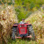 Produktna berza: Cena kukuruza nastavlja da raste