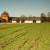 RFV: Otvoren konkurs za kredite u kupovini poljoprivrednog zemljišta
