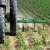 Konkurs za opremu i priključne mašine u sektoru voća, povrća, cveća za Vojvođane