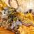 Međimurskim pčelarima isplaćeno milijun kuna za saniranje štete
