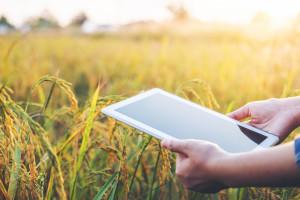 Kako će izgledati hrvatska poljoprivreda nakon 2020. ovisi i o vama