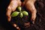 Novi Pravilnik za korisnike sredstava za zaštitu bilja