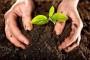 Forum o ekološkom sjemenu