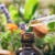 Napravite sami biljne kapi - poznatije kao biljna tinktura