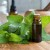 Kako napraviti biljno ulje - macerat?