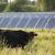 200 milijuna kuna za proizvodnju energije, ali i nabavku strojeva za organsku gnojidbu