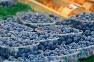 Potrošnja borovnice raste – Evropi će trebati 645 hiljada tona?