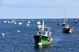 Ribarska flota EUsve je manja u broju, kapacitetu i snazi