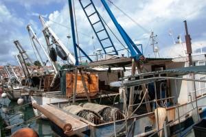 Dopuna Pravilnika o priznavanju organizacija proizvođača u ribarstvu i akvakulturi