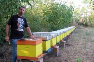 Prikupljeno više od 80 rojeva za ugrožene pčelare