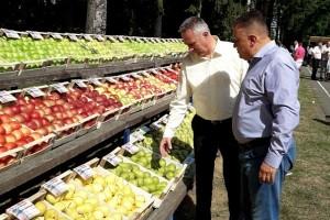 Ministarstvo poljoprivrede RS obezbijedilo 4 miliona KM za otkup voća