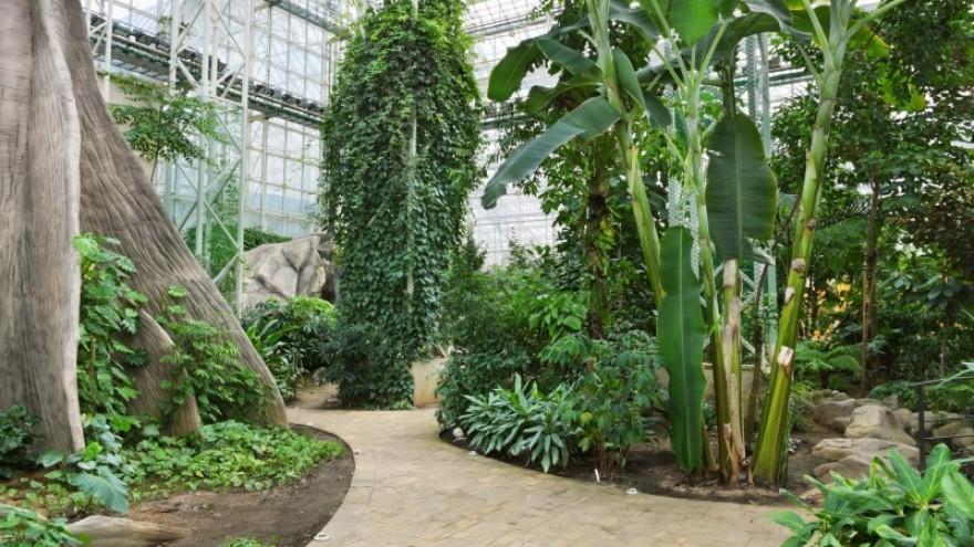 Botanička bašta Jevremovac, zaboravljeni raj u centru Beograda Botanicka-basta1-880x495