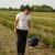 Hobi pretvorili u posao, OPG Božić danas ima 520 sadnica sibirske borovnice