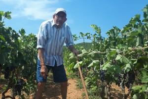 Dok 87-godišnji svekar Branko kopa, nevjesta Ljiljana osvaja nove oznake  HOP-a