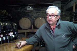Branko Mihalj: Bez pretakanja i kontrole dok sazrijeva nema ni vrhunskog vina