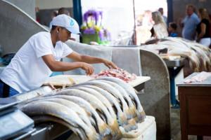 Brazil obustavlja izvoz ribe u Evropsku uniju
