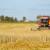 OPG Čižmešija: Prinos uljane repice od 4,5 t/ha i pšenice od 8,3 za Međimurje je izniman rezultat