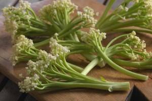 Bejbi karfiol - novo povrće ili dobar marketinški trik?