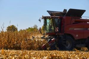 Trumpova administracija razbjesnila farmere, rafinerijama olakšano odustajanje od kukuruza