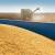 U Ukrajini površine pod kukuruzom iznad očekivanih