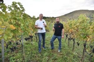 Rođaci otvorili vinariju na crvenom brijegu i oživljavaju legende