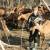 Šestogodišnji Milutin je najmlađi pastir u Srbiji