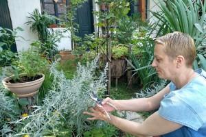 Milica Arsić vlasnica je najlepšeg vrta u srcu Šumadije