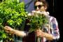 PDV na sadnice i sjemenje cvjećarima snižen na 13%