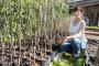 U Makedoniji akcija - Dan drveta