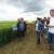 Axereal: Ratari očekuju solidne prinose pivarskog ječma, oko 5 t/ha