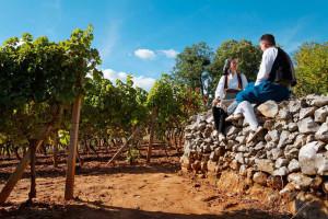 Hercegovački vinari zadovoljno trljaju ruke - iza njih je rekordna sezona