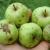 Neprskana i negnojena jabuka - je li doista i ekološka?