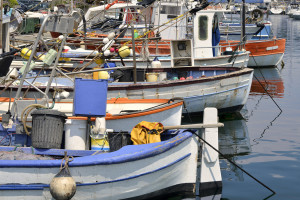 Globalni komercijalni ribolov pao za 6,5 odsto - mnogi ribari pribegavaju direktnoj prodaji
