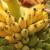 Pivo od banana za spas turizma pogođenog koronakrizom?
