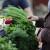 Previše novca odlazi za promociju organskih proizvoda u EU?