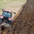 Veliki pad broja zaposlenih u poljoprivredi