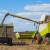 Ratarska 2020: Suncokret popravio sliku uljarica, ugodno iznenadio i kukuruz