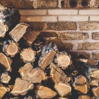Iz vlastitog vinograda uzela drva, sud je kaznio s 1.000 kuna!