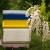 Bagrem izmrzao u zemljama u okruženju - očekuje se rast cijena meda