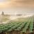 Preko 40 miliona KM do sada uloženo u navodnjavanje, poljoprivrednici očekuju bolje urode